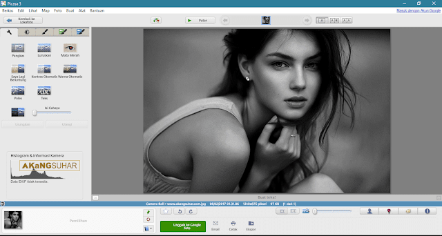 Download Picasa Photo 3.9.141 Build 255 Free Terbaru - Latest Version