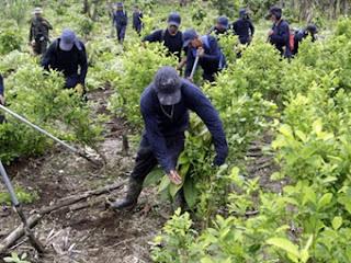 PCC e CV Miram o Espólio das FARC