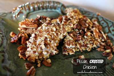 pecan chicken recipes