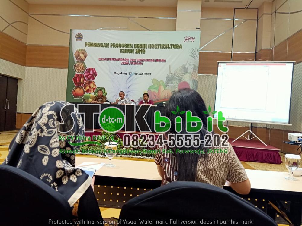 Seminar Kegiatan