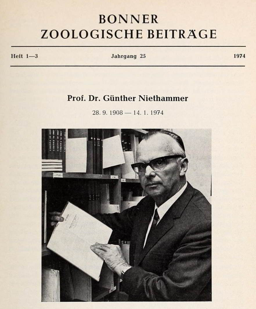 Dr niethammer