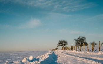 Wallpaper: The Calm Winter Nature