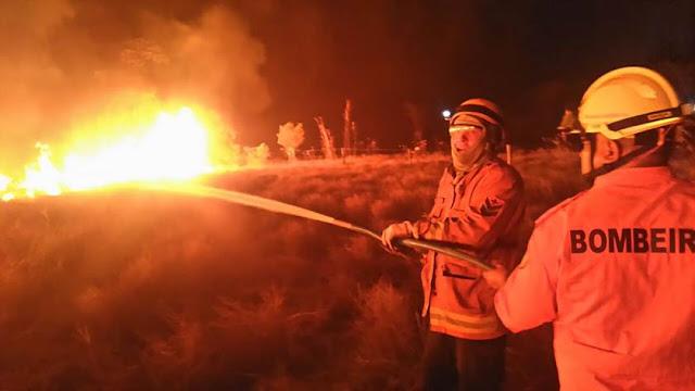 VÍDEO: Incêndio atinge plantação de milho no PAD-DF, na BR-251