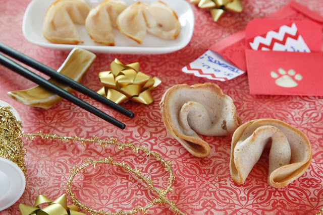 http://dalmatiandiy.blogspot.co.nz/2016/01/recipe-chinese-new-year-dog-fortune.html