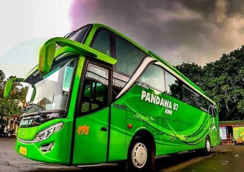 Bus Tour dan Travel Pariwisata Wali Songo