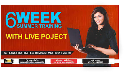 summer training in noida
