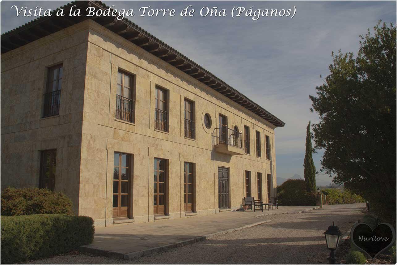 epoca de vendimia y visitamos la bodega torre de oña en Páganos