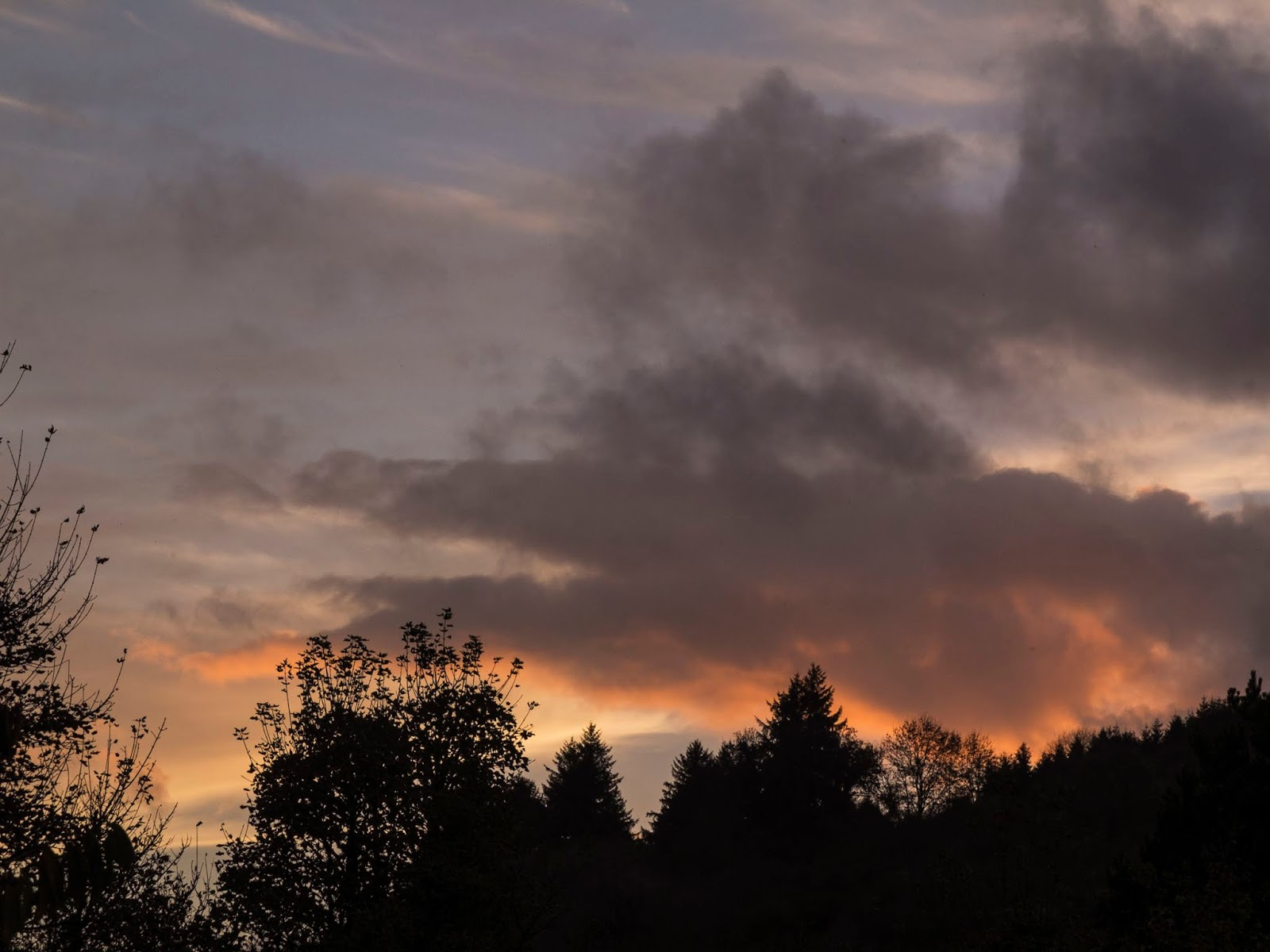 Sunset clouds over trees on a mountain side in North County Cork.