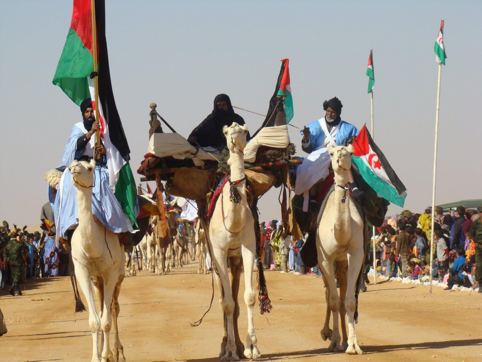 """Resultado de imagen de ocupacion marroquí"""""""