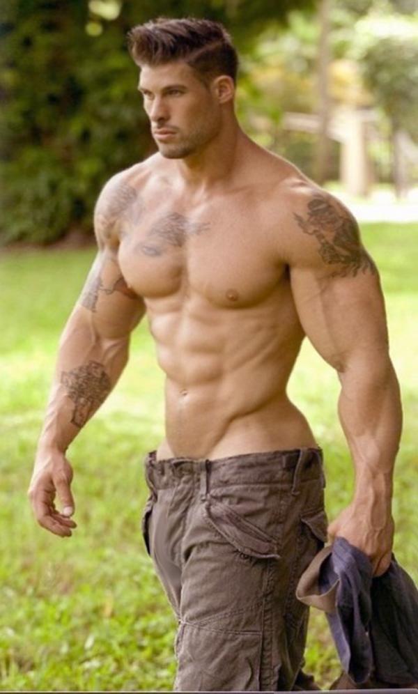 Chart Anatomy Bodybuilders