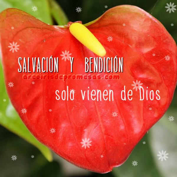 salvación y bendición reflexiones cristianas con imágenes