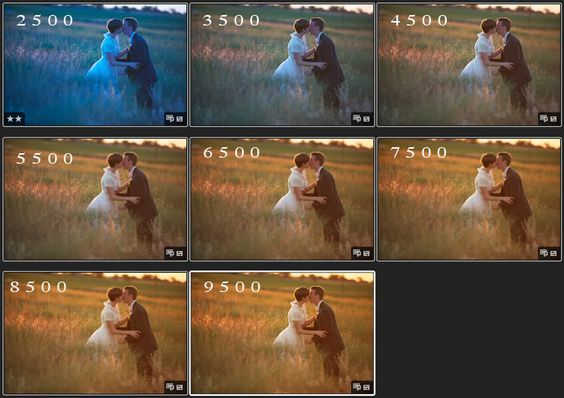 Balans Bieli; BB; Wb; White balance; photography; pinterest; couple; kissing; wedding