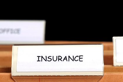 How To Choose A Good Teaching and Insurance Law
