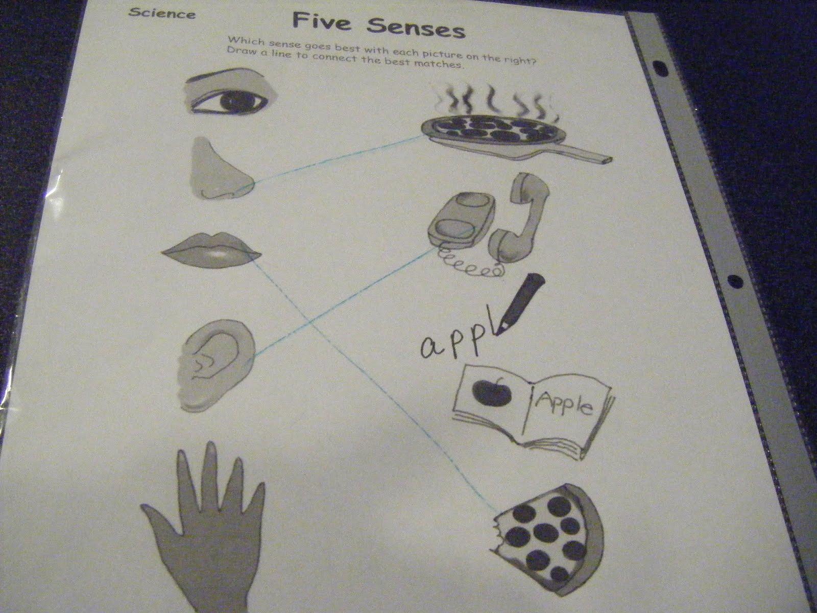 Abc S Of Jess S House 5 Senses Sight