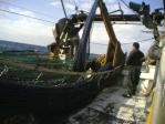 DEACKHAND - FISHING SHIP, TRAWLER 73 FT
