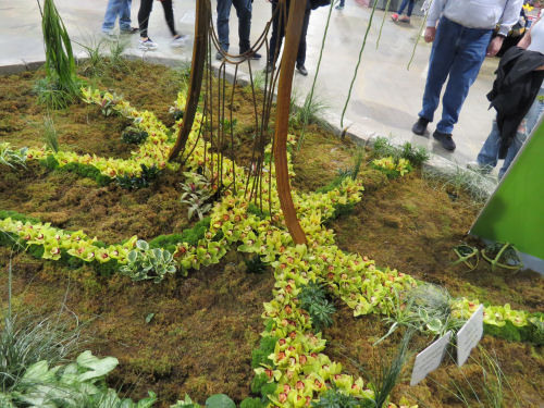 Philadelphia Flower Show 2019- The Seasons- Summer