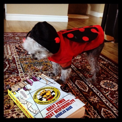Murchie stands beside the book in question, which is now laid on its side. His body is now perpendicular to the viewer to show off his ladybug costume, which has red-spotted black semi-circle wings in addition to the hood.