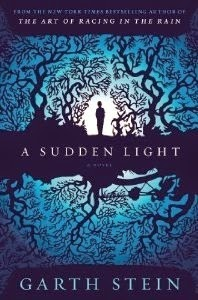 A Sudden Light cover