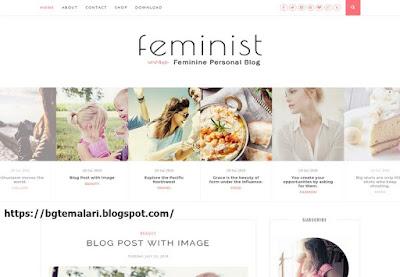 Feminist Blogger