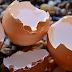 Manfaat Luar biasa Mengkonsumsi Cangkang Telur