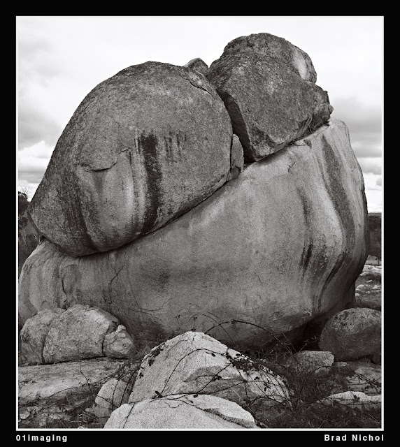 Pejar Creek NSW Landscape, Boulders and Blackberries, monochrome, square format