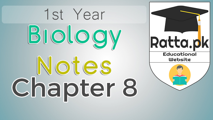 1st Year Biology Notes Chapter 8 Kingdom Fungi - 11th Class Bio Notes pdf