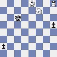 Estudio artístico de ajedrez de Vassily y Mikhail Platov, 64 - Compuesto en 1929