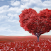 Kata Kata Cinta Bahasa Jawa Paling Romantis dan Artinya