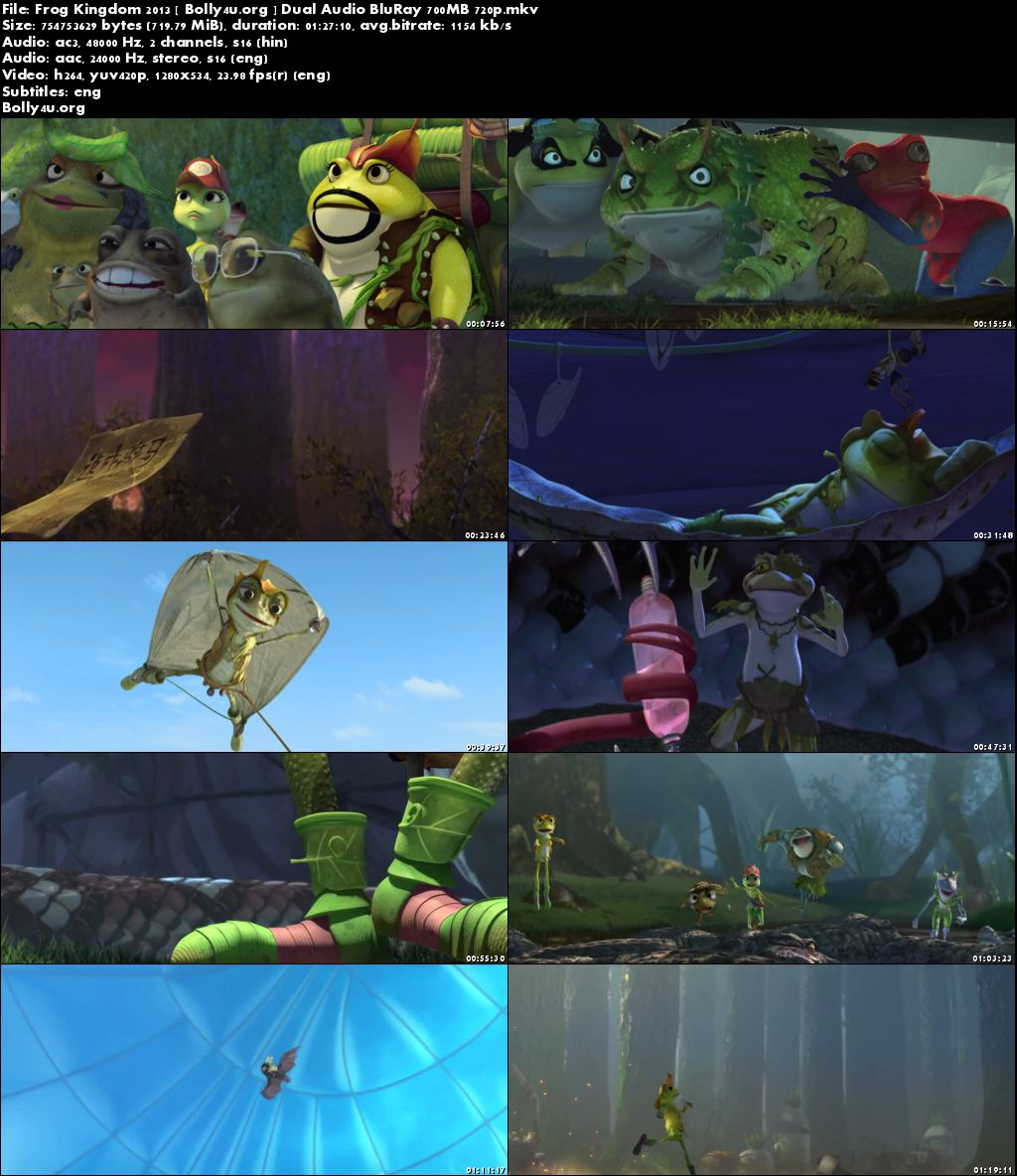 Frog Kingdom 2013 BRRip 700MB Hindi Dual Audio 720p Download