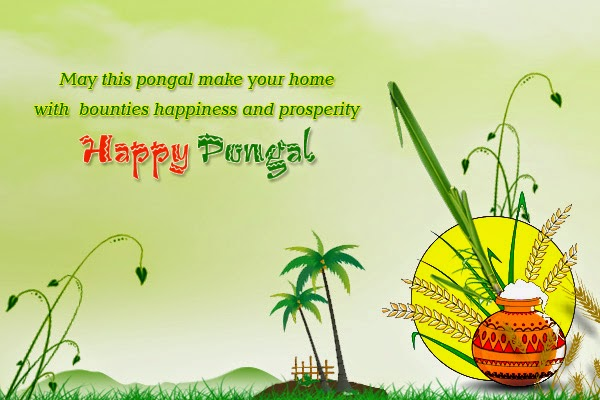 Pongal-Images