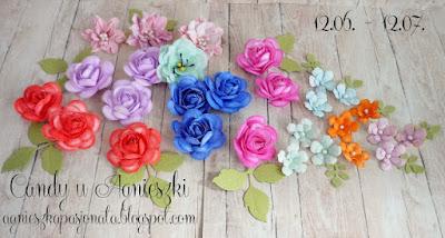 https://agnieszkapasjonata.blogspot.com/2016/06/563-kwiatowe-candy-u-agnieszki.html