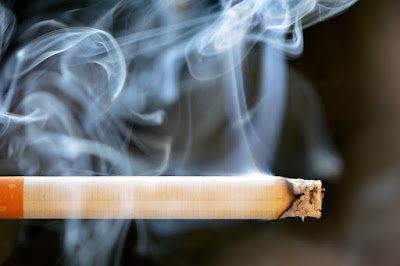 public health chief says,Smoking should be banned in council housing
