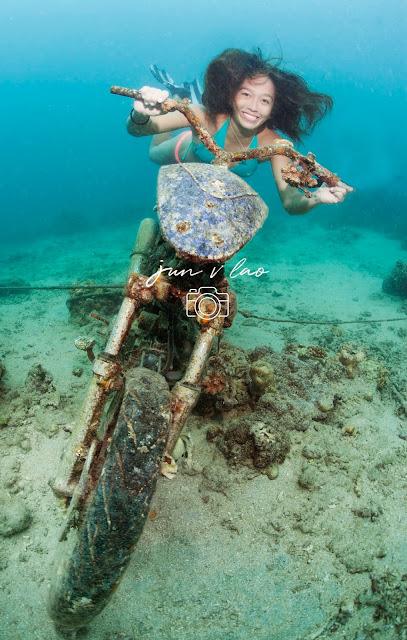Underwater Photography Philippines, PaparazSea,