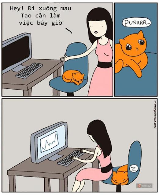 Bộ tranh: Chỉ những ai nuôi mèo mới có thể hiểu sâu sắc những tình cảnh này