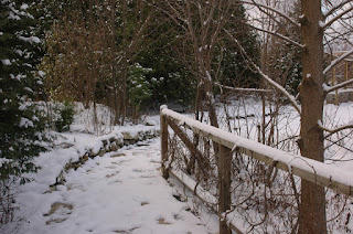Path in winter, Roche Fleurie Garden