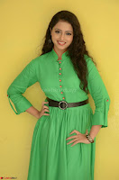 Geethanjali in Green Dress at Mixture Potlam Movie Pressmeet March 2017 006.JPG
