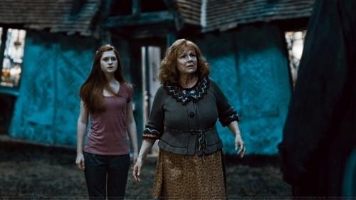 Моли и Джини Уизли в Хари Потър и нечистокръвния принц