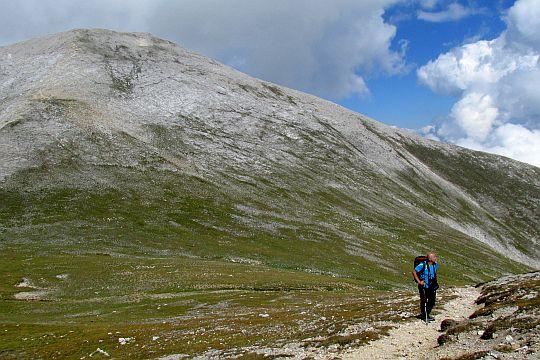 Hala na zboczu opadającym spod przełęczy Premkata.