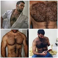 Hairy machos - hairy chest