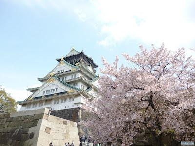 染井吉野と大阪城