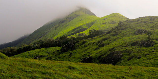 Chembra Peak is the highest peak in Wayanad, at 2,050 m above sea level.