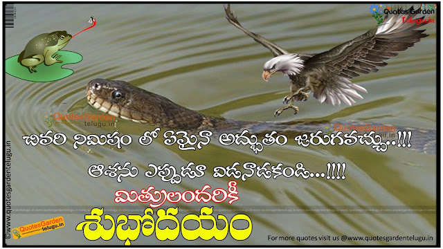Best motivational good morning quotes in telugu 1223