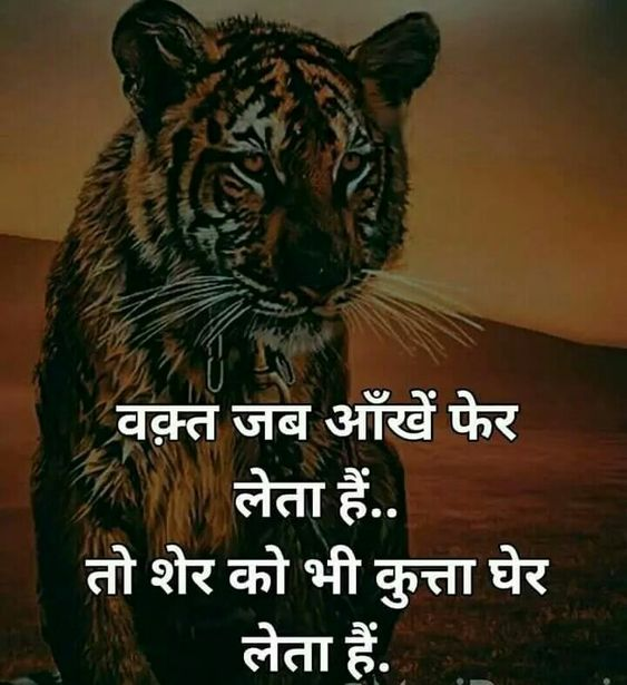 Attitude Shayari for Whatsapp & Facebook