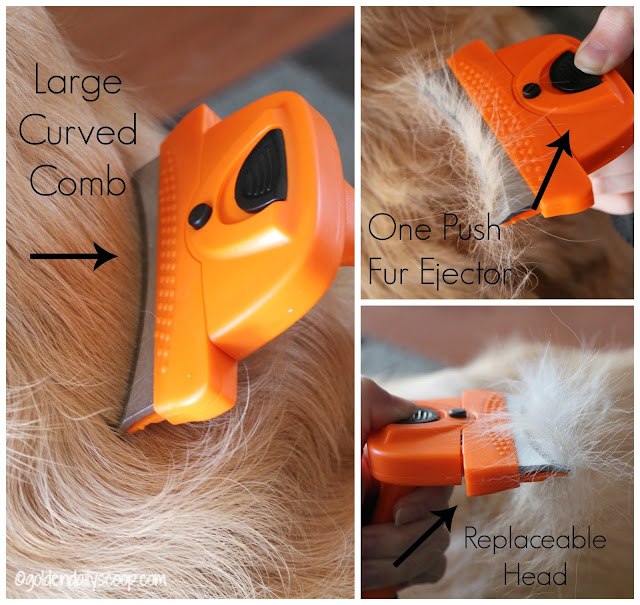 how to groom your golden retriever dog, dog grooming deshedding comb review and giveaway