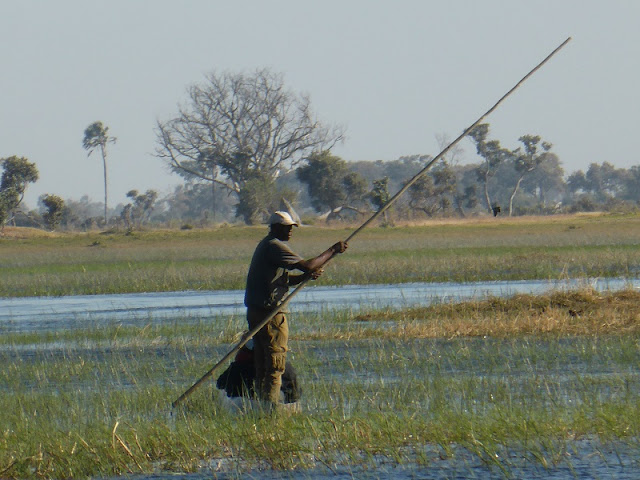 Mokoro en el rio Okawango