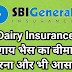 Dairy Cattle Insurance Policy Of SBI General Insurance (Hindi)