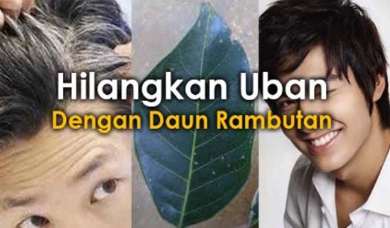 TIPS MUDAH !! :#PETUA~Benarkah Daun Rambutan Boleh Menghilangkan Rambut Beruban?