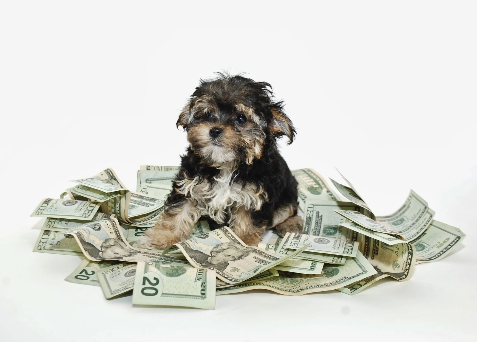 personal finance beauty blog money saving tips