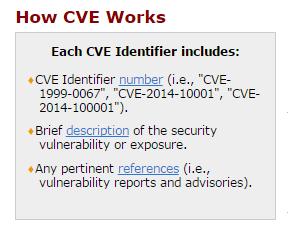CVE Works