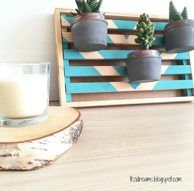 DIY Decorar con Plantas en 3 Pasos, DIY HOME DECO, DIY HANDBOX, DIY Cactus